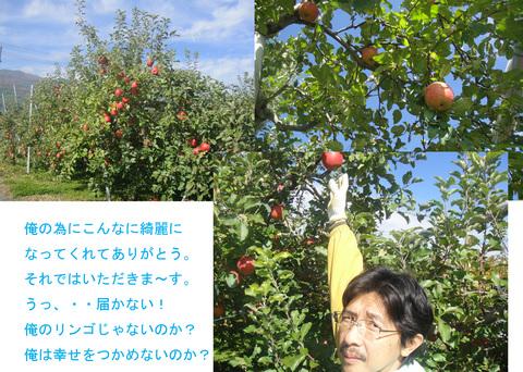 リンゴ狩り2_edited-1.jpg