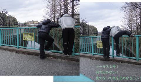神田川22_edited-1.jpg
