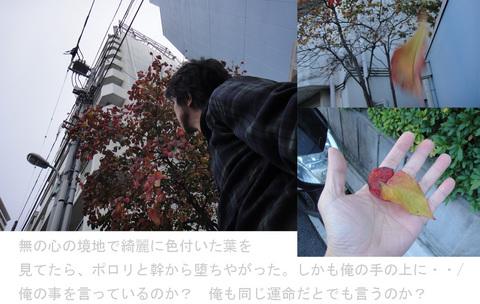 121116_2_edited-2.jpg